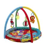 Playgro Speelkleed Ballenbak 5 in 1 Activity Gym